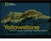 NGO: Первозданная природа: Йеллоустон — священная природа Америки
