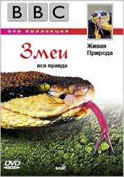 BBC: Живая Природа — Правда о Змеях / The Wild Life: Serpent
