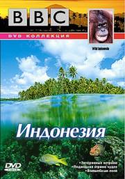 BBC: Индонезия (2006)