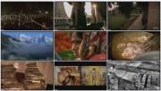 BBC: Индия с Майклом Вудом. Истоки (фильм 1) / BBC: The Story of India with Michael Wood (2007)