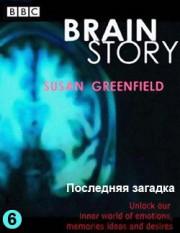 BBC: Тайны мозга. Последняя загадка / BBC: Brain Story (фильм 6)