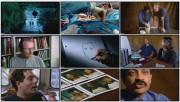 BBC: Лицо человека. Ты в центре внимания (фильм 2) / BBC — The Human Face. Heres Looking At You (2001)