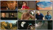 BBC: Чувства Человека. Вкус и обоняние (фильм 1) / Human Senses