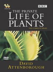 BBC: Невидимая жизнь растений (6 фильмов)