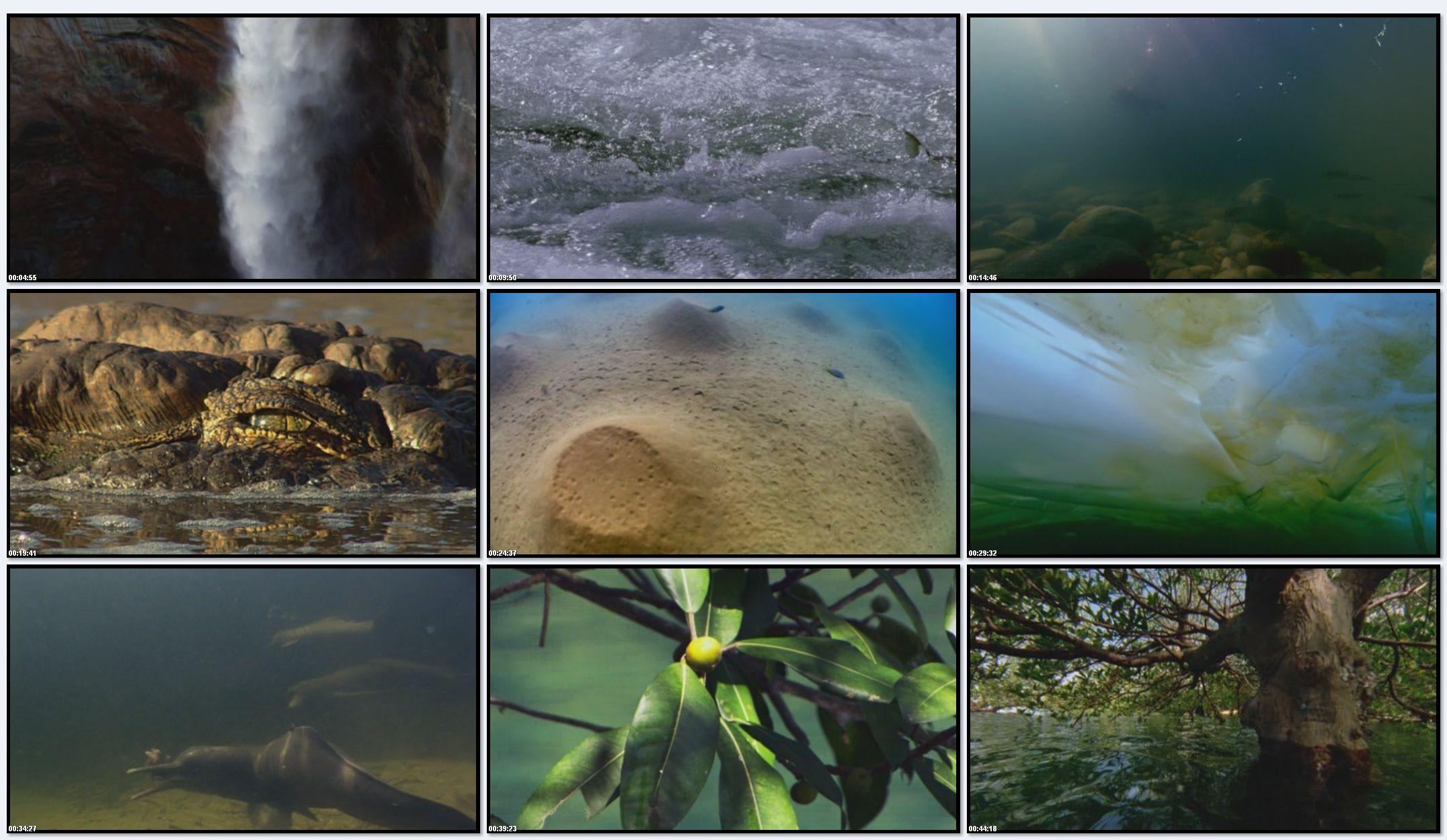 BBC: Планета Земля - Пресная вода (фильм 3)