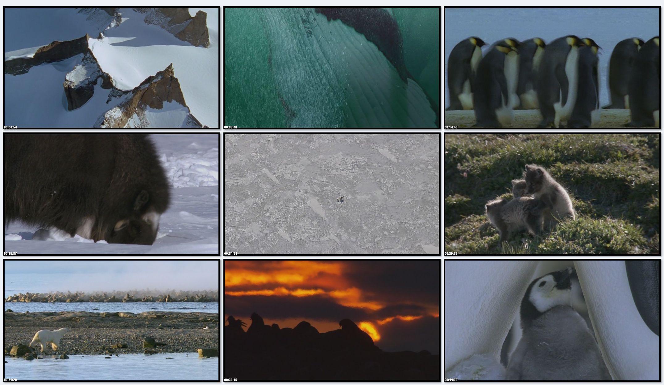 BBC: Планета Земля - Ледяные Миры (фильм 6)