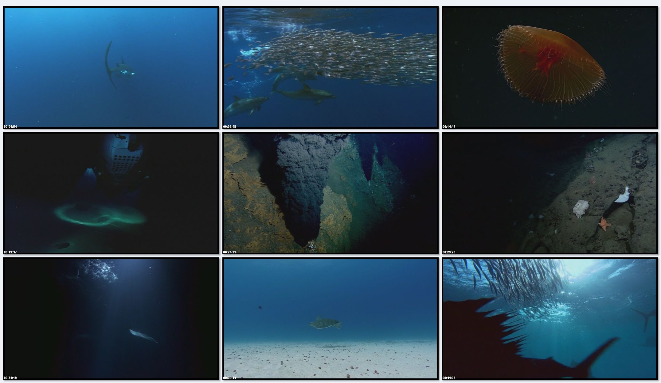 BBC: Планета Земля - Глубины Океанов (фильм 11)