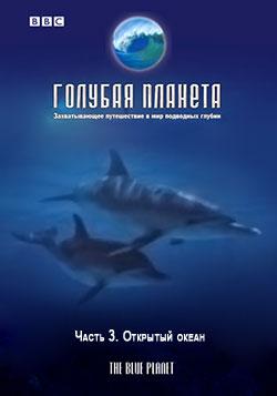 BBC: Голубая планета. Открытый океан / The Blue Planet. Open Ocean (Фильм 3)