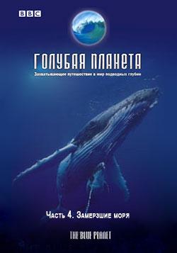 BBC: Голубая планета. Замерзшие моря / The Blue Planet. Frozen Seas (Фильм 4)