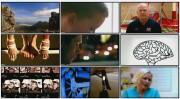 BBC: Лабиринты мозга (фильм 1) / BBC — The Human Mind. Get Smart