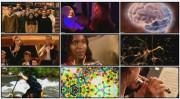 BBC: Лабиринты мозга (фильм 2) / BBC — The Human Mind. Personality