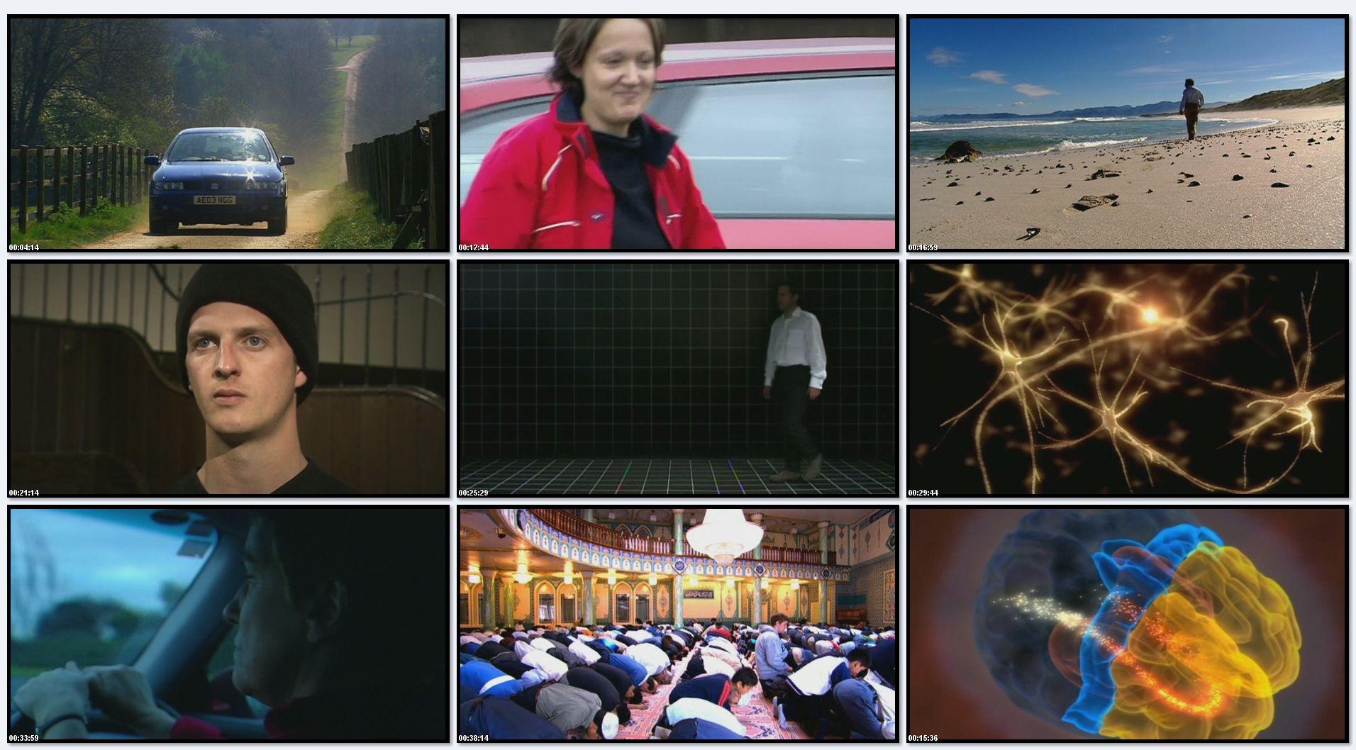 BBC: Лабиринты мозга (фильм 2) / BBC - The Human Mind. Personality