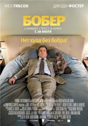 Бобёр / The Beaver