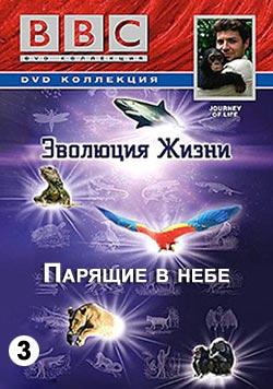 BBC: Эволюция Жизни. Парящие в небе (фильм 3) / BBC: Journey Of Life