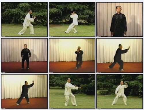 Тайцзи-цюань Ян - Комплекс «108 форм» (ch)