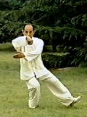 Тайцзи-цюань Ян — Комплекс «108 форм» (ch)