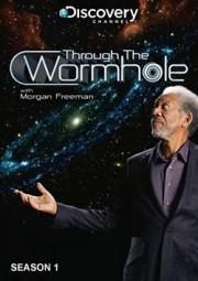 Через червоточину с Морганом Фриманом / Through the Wormhole with Morgan Freeman (Сезон 1)